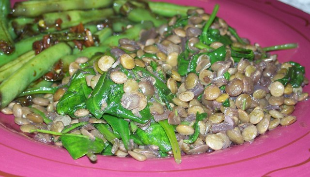 lentils with red wine and herbs