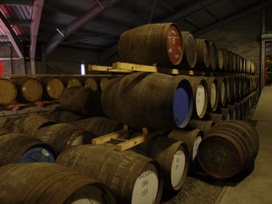aging barrels of Scotch